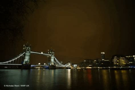 Tower Bridge Night GIFs - Find & Share on GIPHY