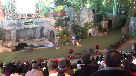 Animal Actors On Location - Orlando Tickets, Hotels, Packages