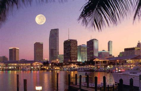 Must Visit Miami Once In Lifetime