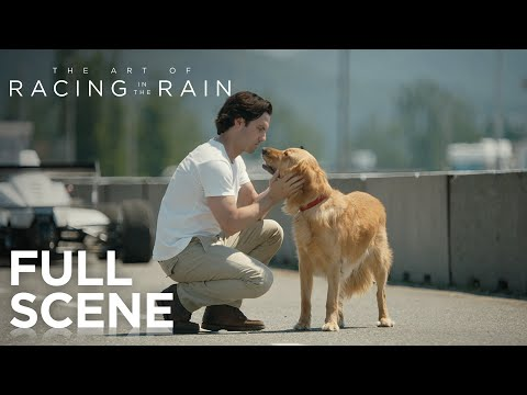 'The Art of Racing in the Rain' is a film about cars and